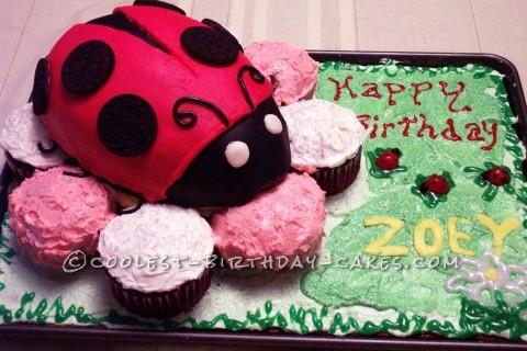 Coolest Ladybug Cake for Ladybug Girl 1st Birthday