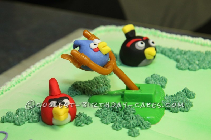 Coolest Angry Birds 8th Birthday Cake