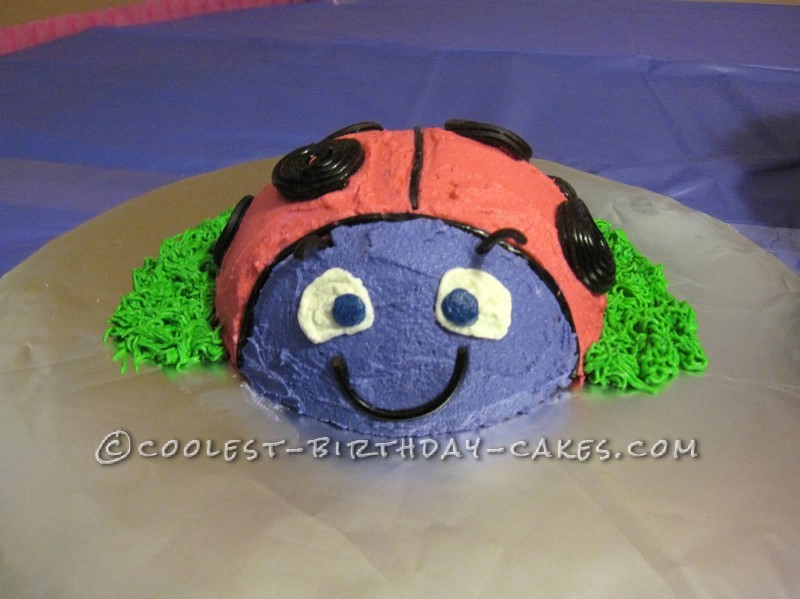 Beautiful Dairy-Free and Soy-Free Ladybug Cake