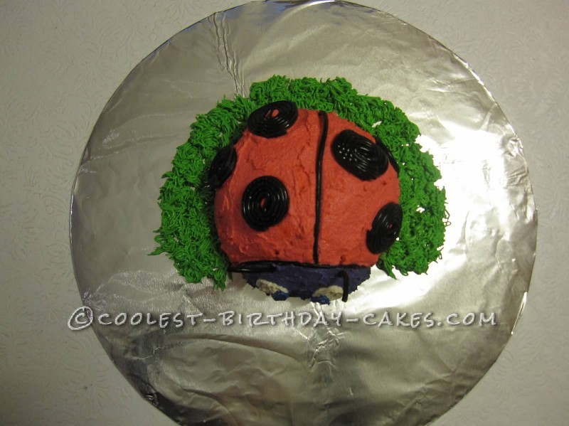 Beautiful Dairy-Free and Soy-Free Ladybug Cake