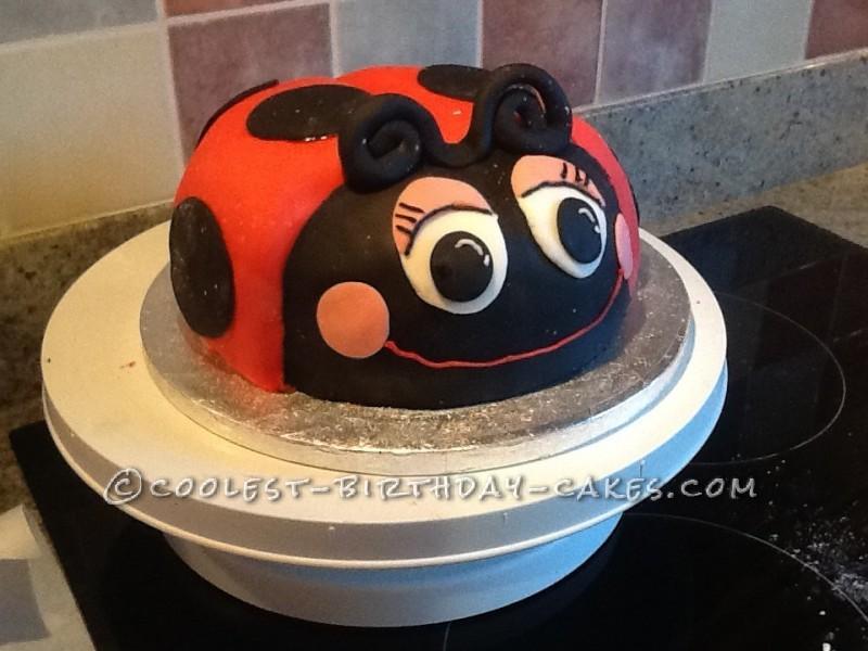 Amazing Coolest Ladybug Birthday Cake Personalised Birthday Cards Veneteletsinfo