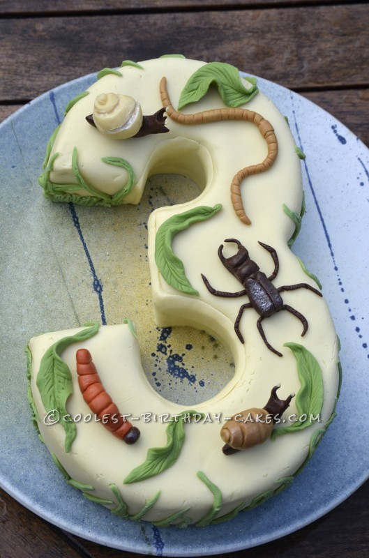 A Number 3 Birthday Cake with Creepy Crawlies