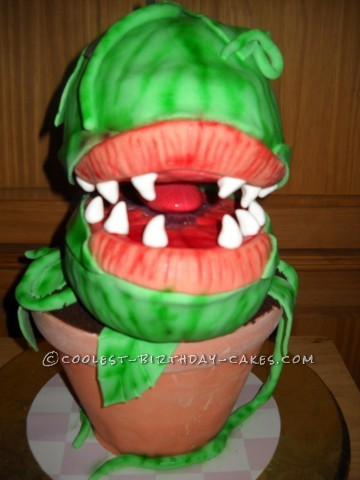 """Audrey II"" Close Front View"