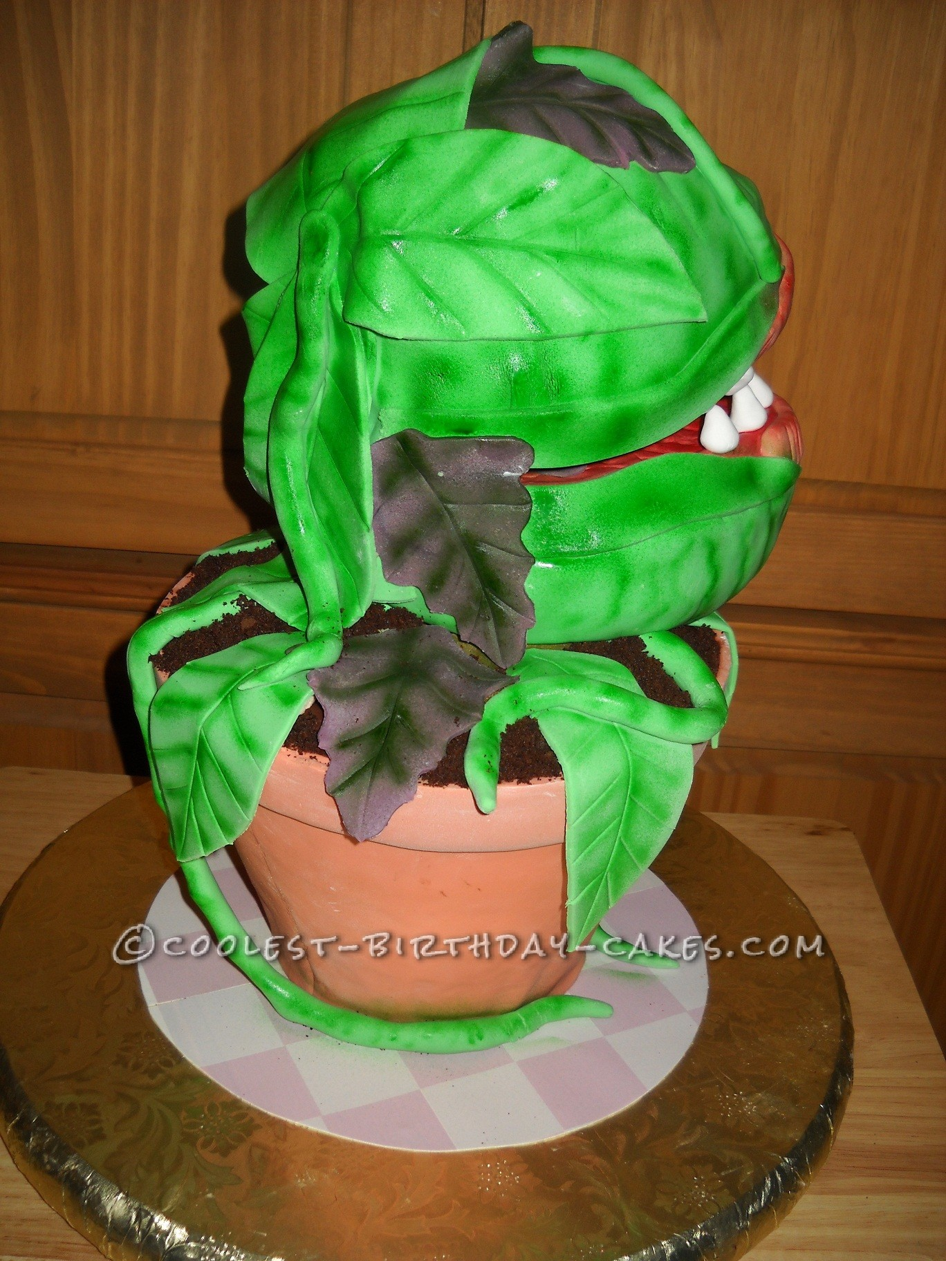 """""""Audrey II"""" Right Side View"""