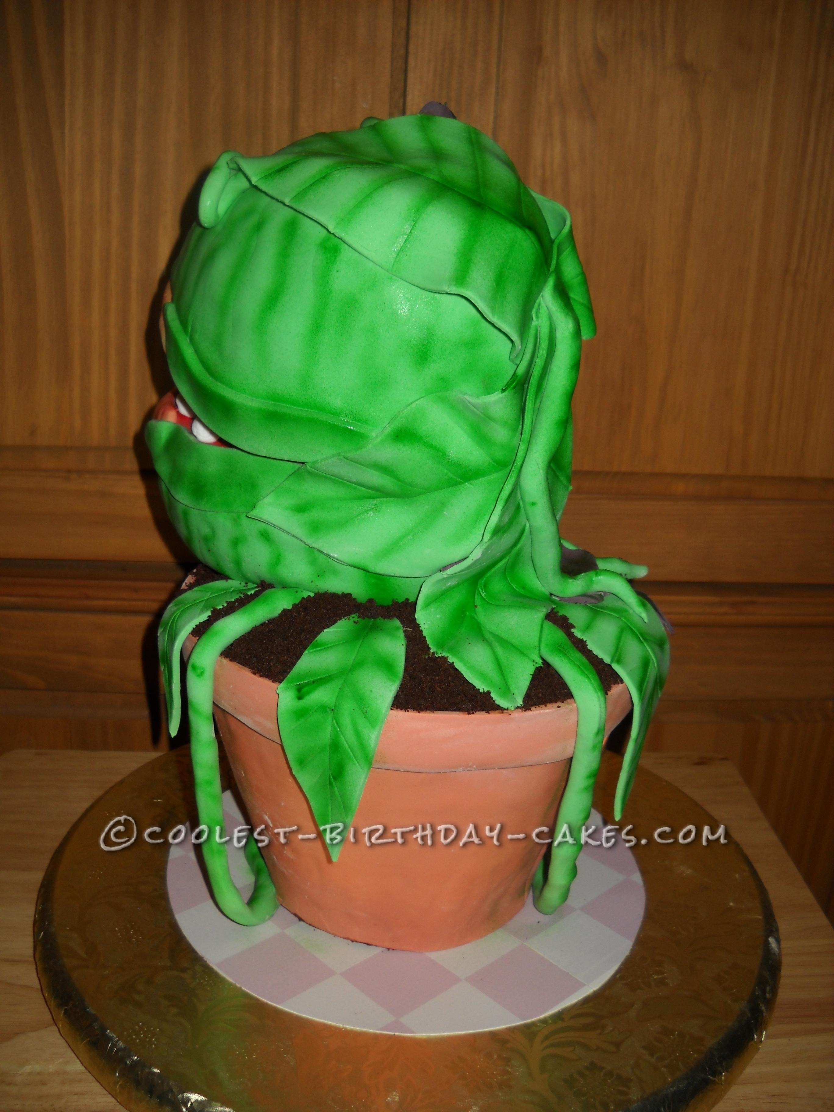 """""""Audrey II"""" Right Rear View"""