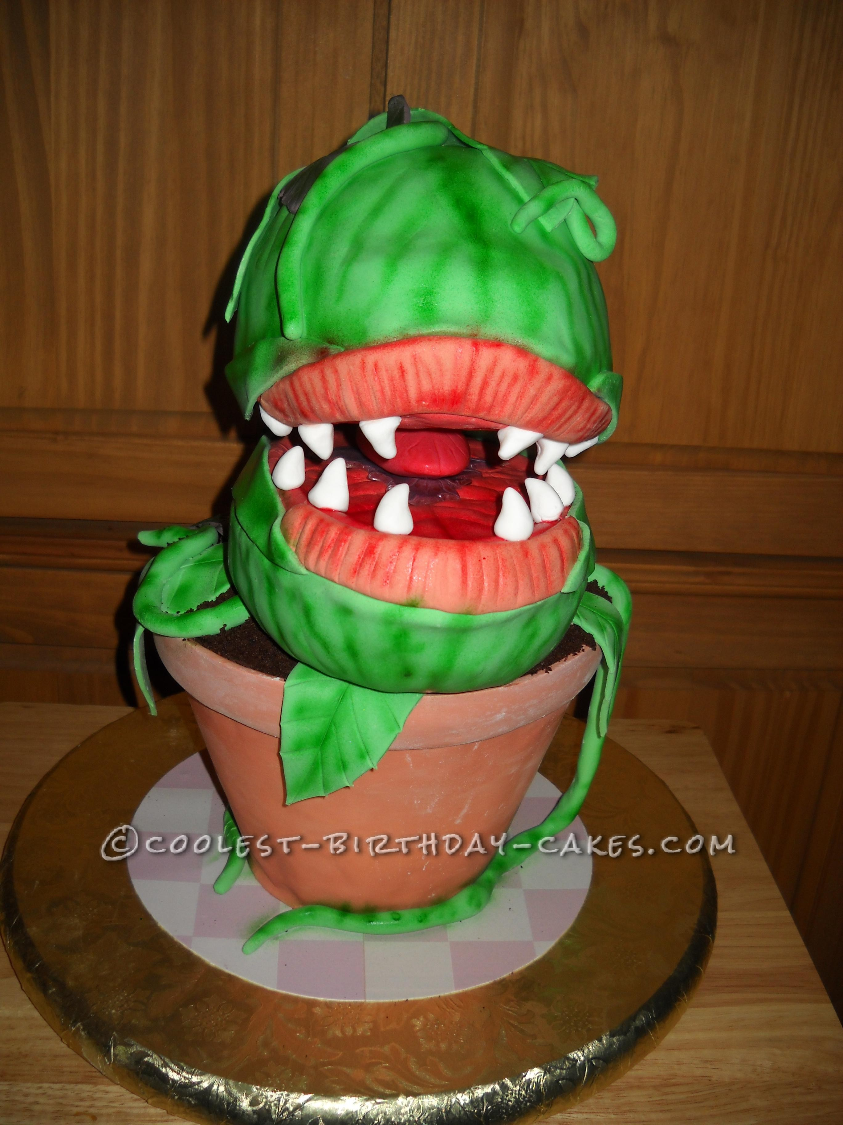 """""""Audrey II"""" Front View"""