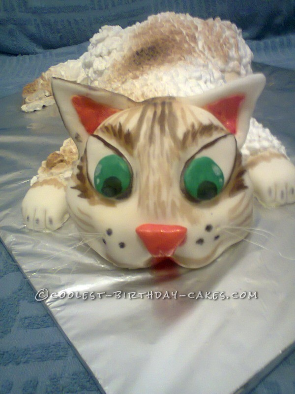 Coolest Cat Cake