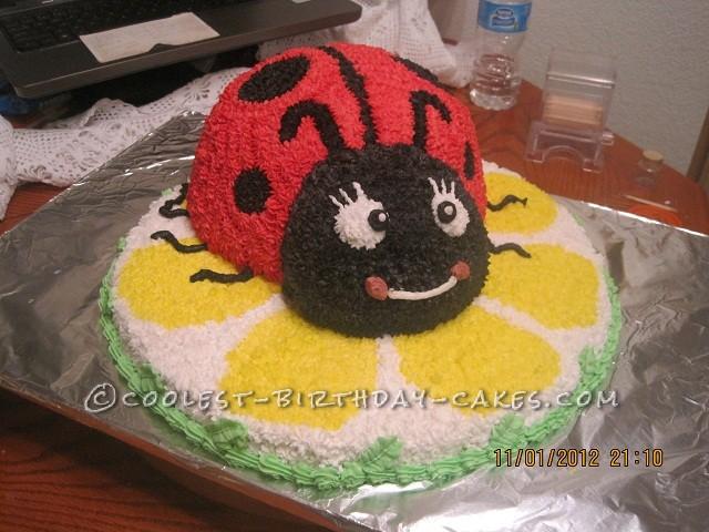 Coolest Ladybug Birthday Cake