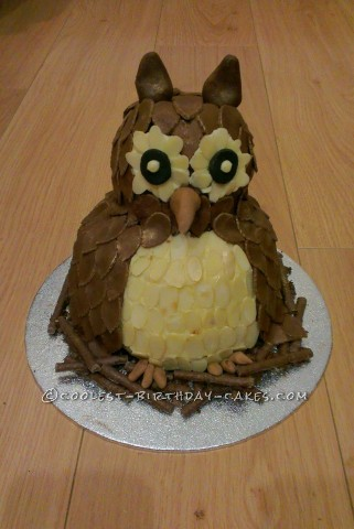 Coolest Chocolate Fudge Owl Cake