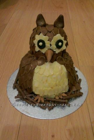 Coolest Chocolate Fudge Owl Cake
