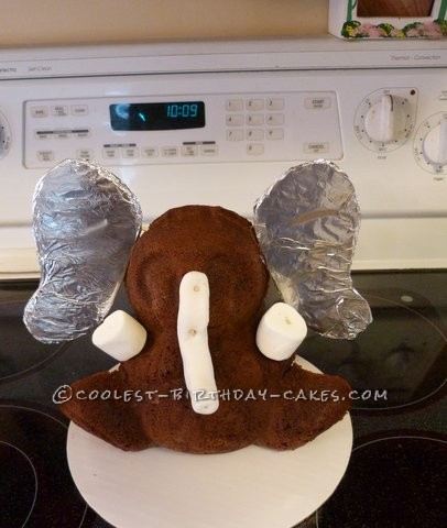 From Bear to Baby Elephant Cake