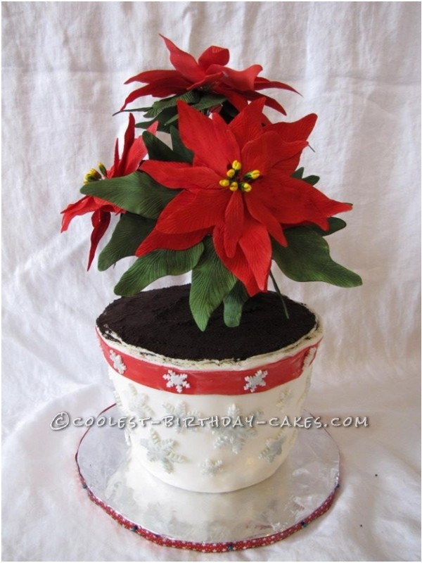 Awesome Poinsettia Flowers Christmas Cake