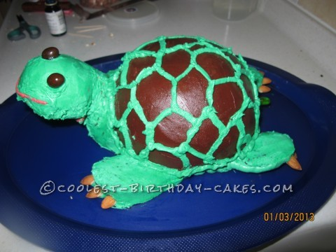 3D Turtle Cake that Looked Almost Real to my 3yr Old