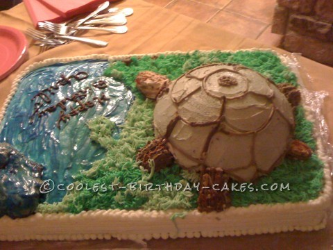 Big Turtle Birthday Cake