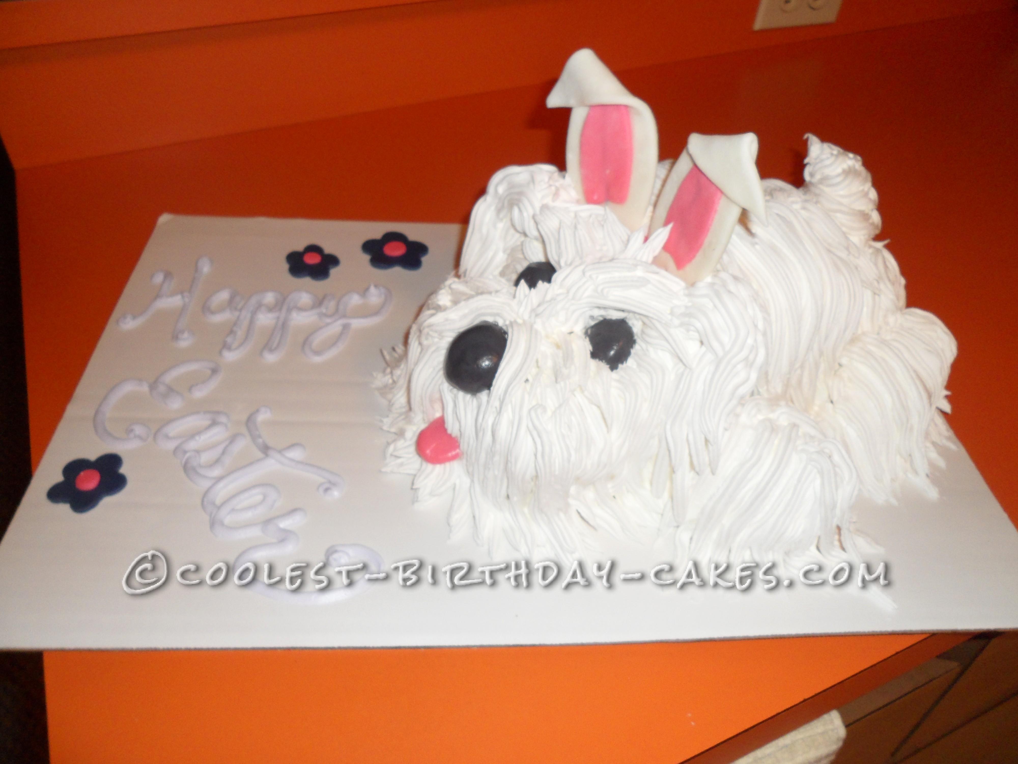 Cool Homemade Dog Cake With Bunny Ears