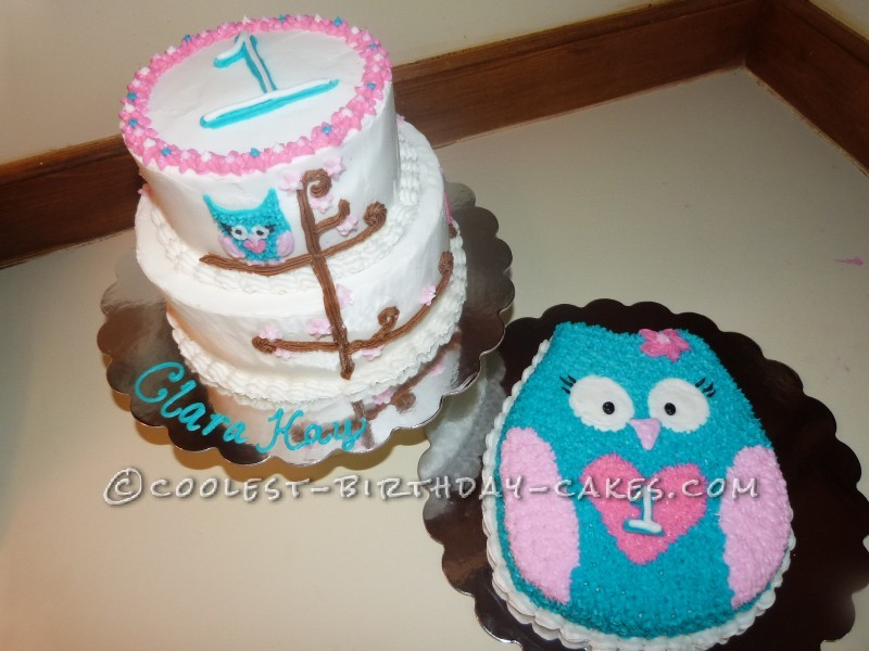 Cool Owl Cakes for First Birthday
