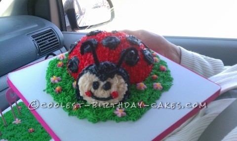 Little Lady Bug Birthday Cake