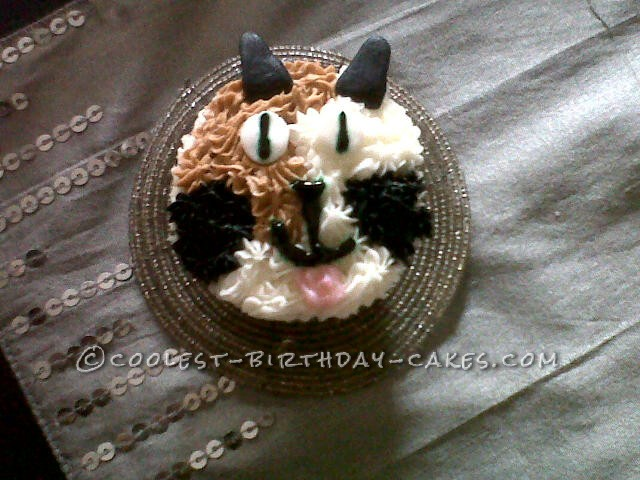 Coolest Novelty Cat Cake