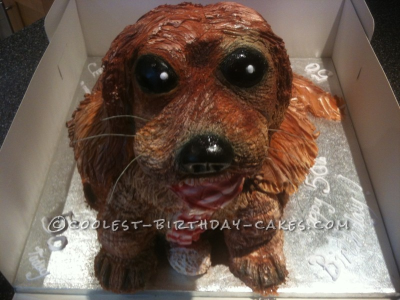 Cool Dog Cake