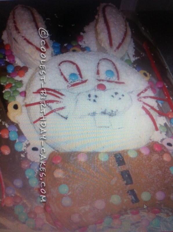 Homemade Rabbit Cake