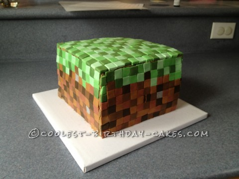 "Giant Minecraft ""grass block"""