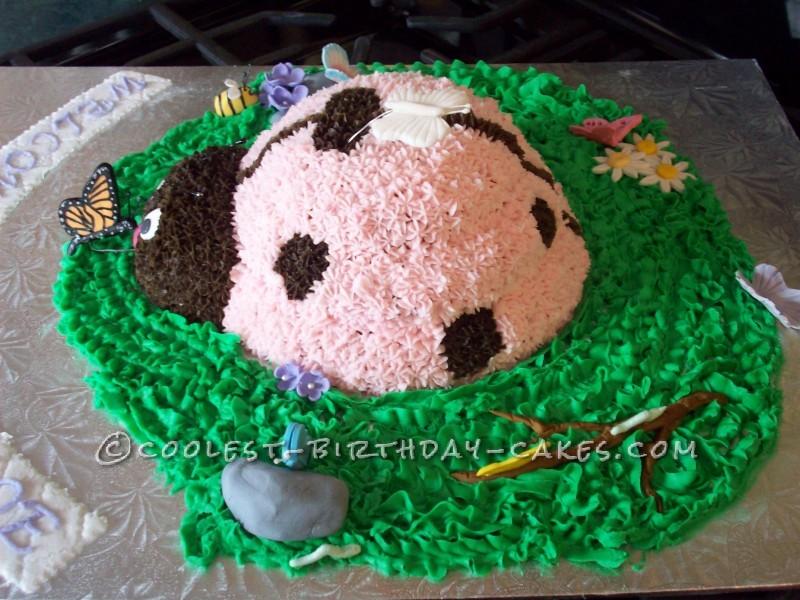 Awesome Ladybug Cake