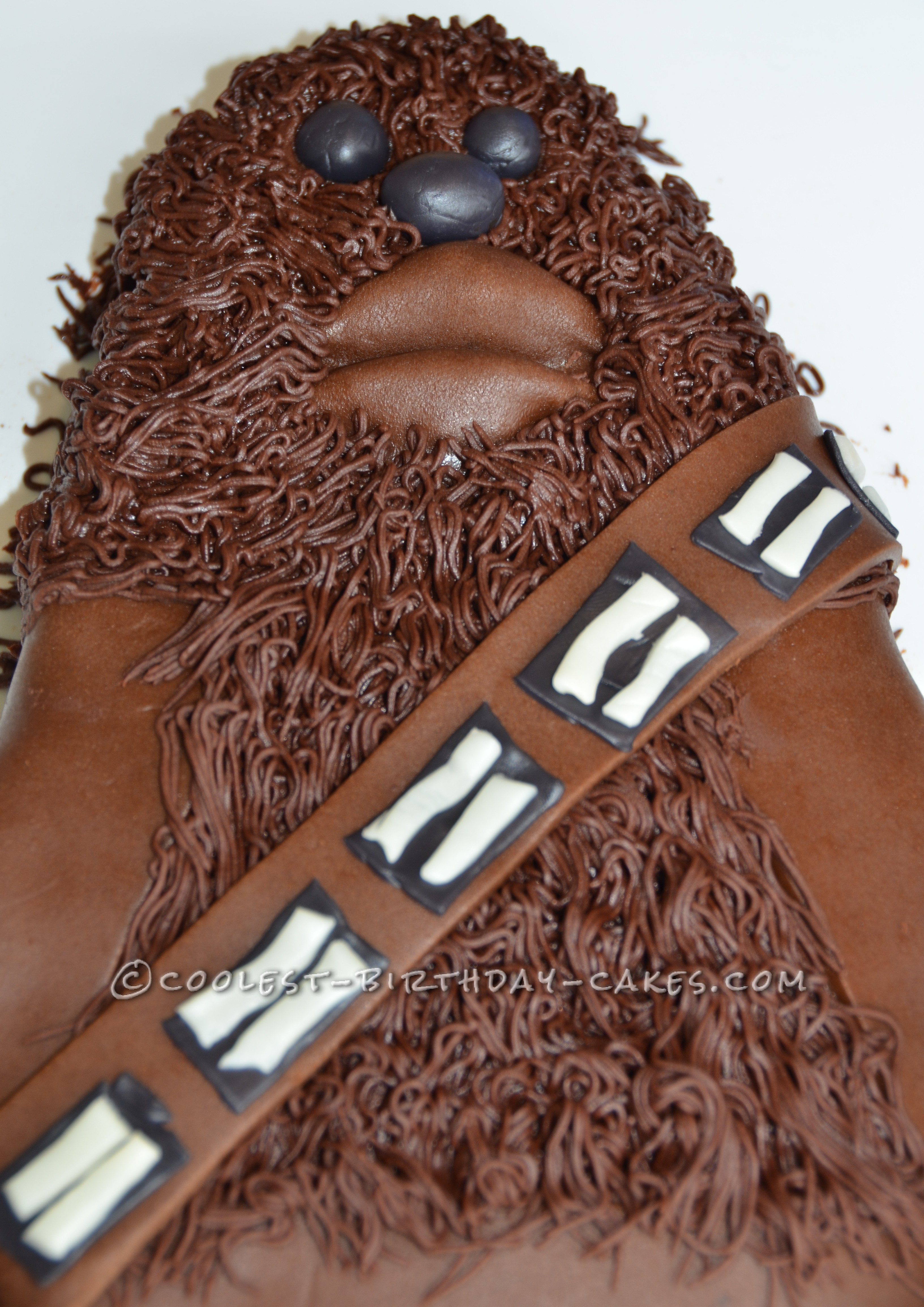 Close up of the fur
