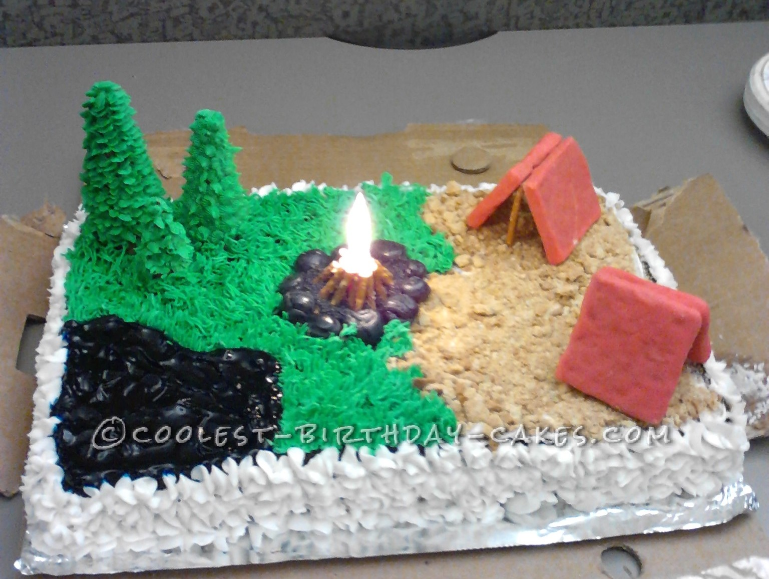Coolest Summertime Fun Camping Cake