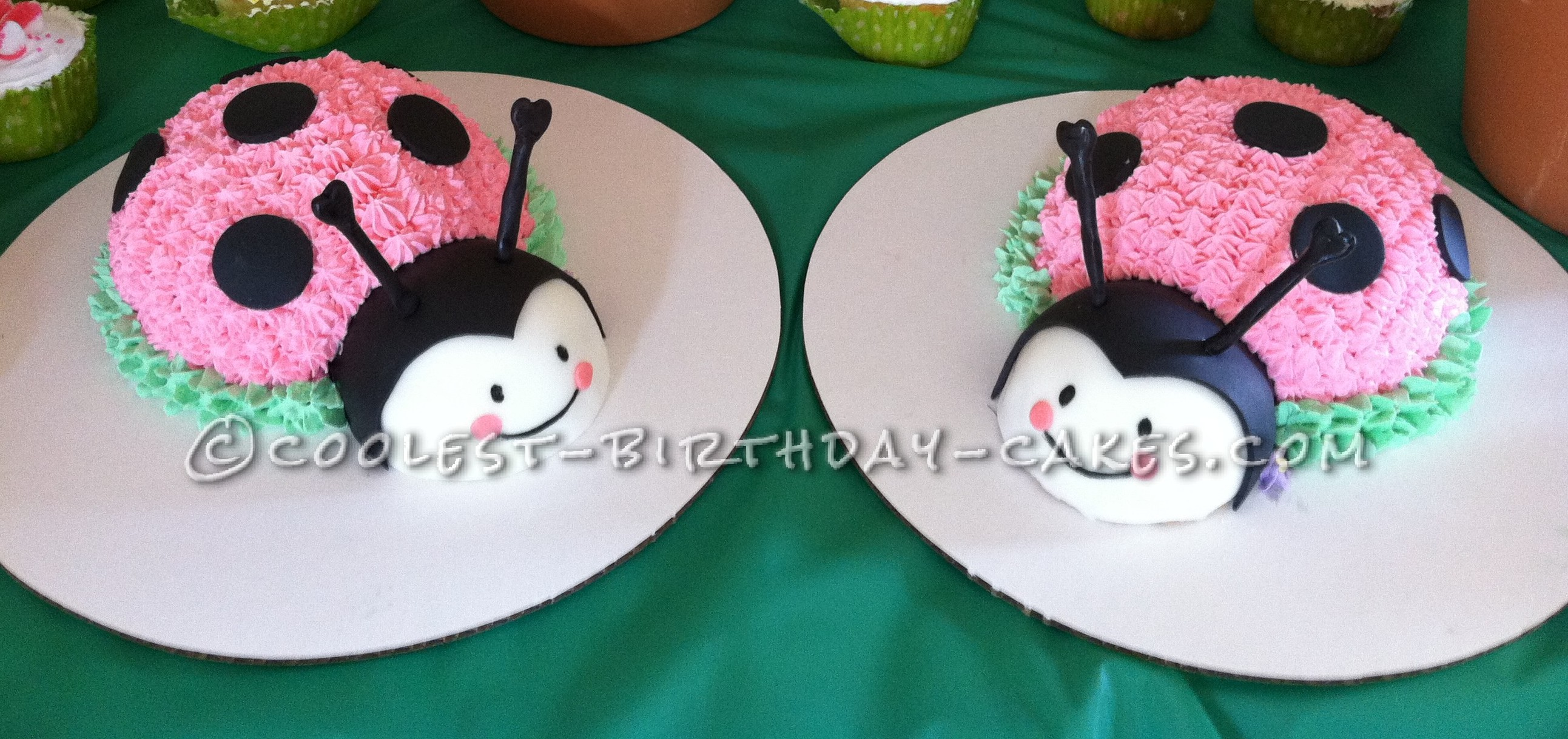 Twin Ladybug Smash Up Birthday Cakes