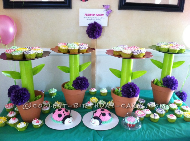 Twin Ladybug Smash Up Birthday Cakes