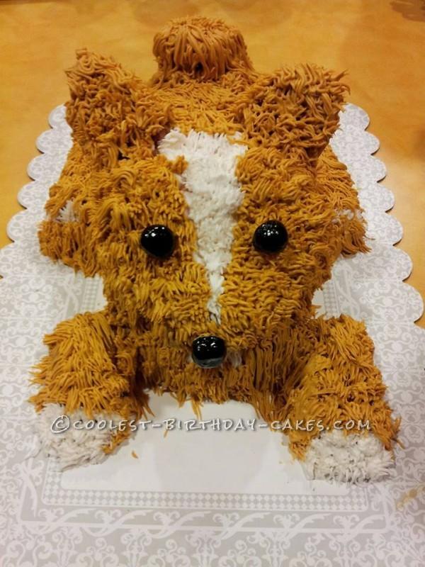 Coolest Dog Cake