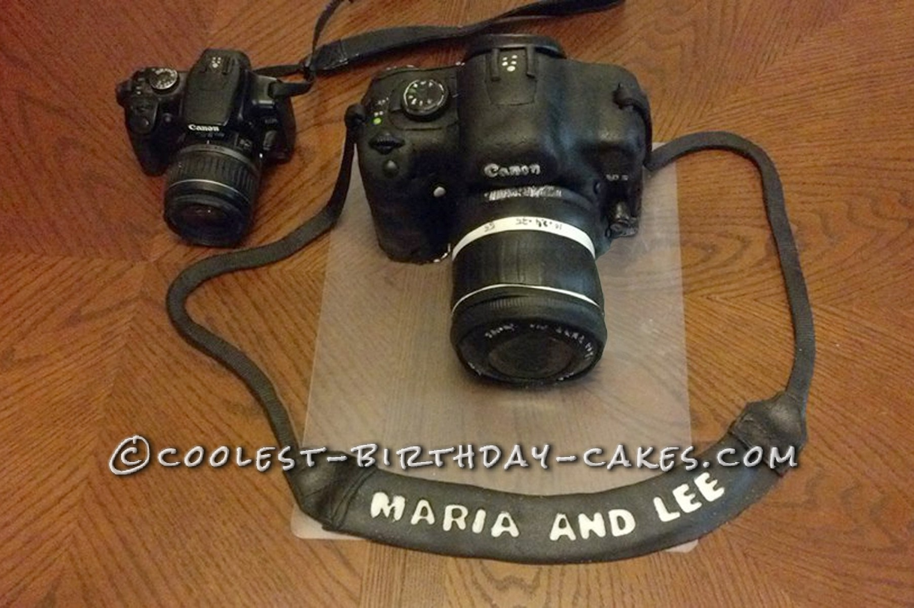 Camera Cake in comparision with real camera