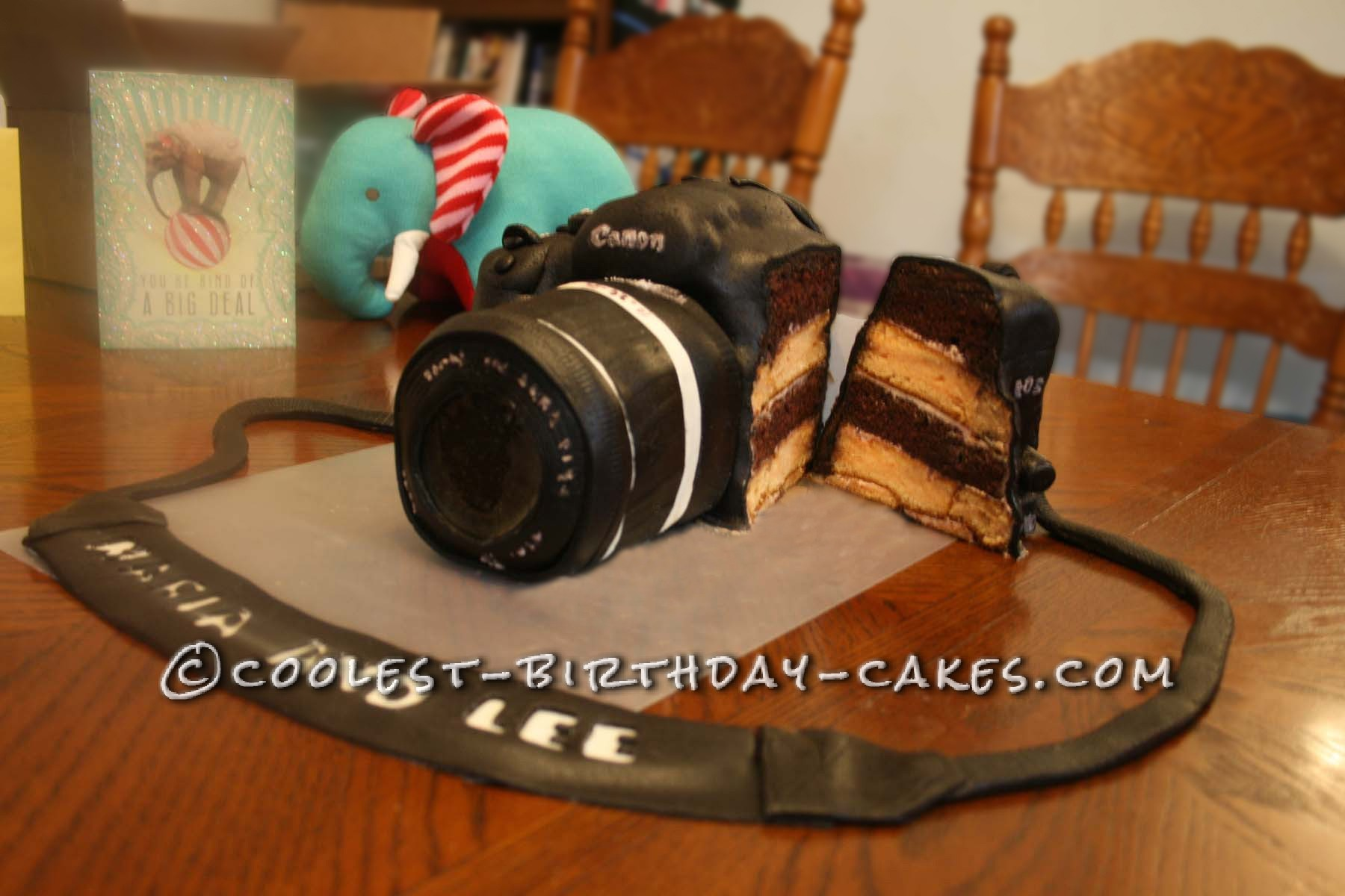 Camera Cake sliced open