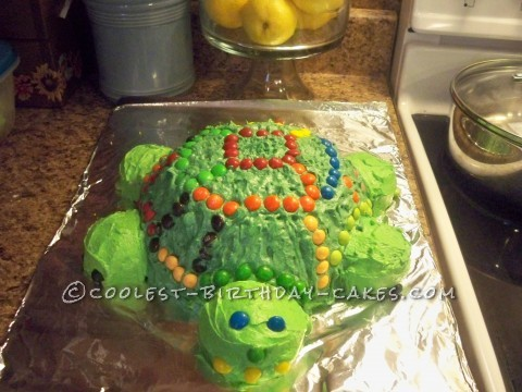 Coolest Turtle Birthday Cake