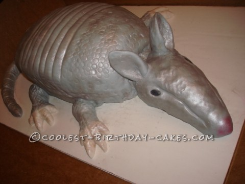 Coolest Armadillo Birthday Cake