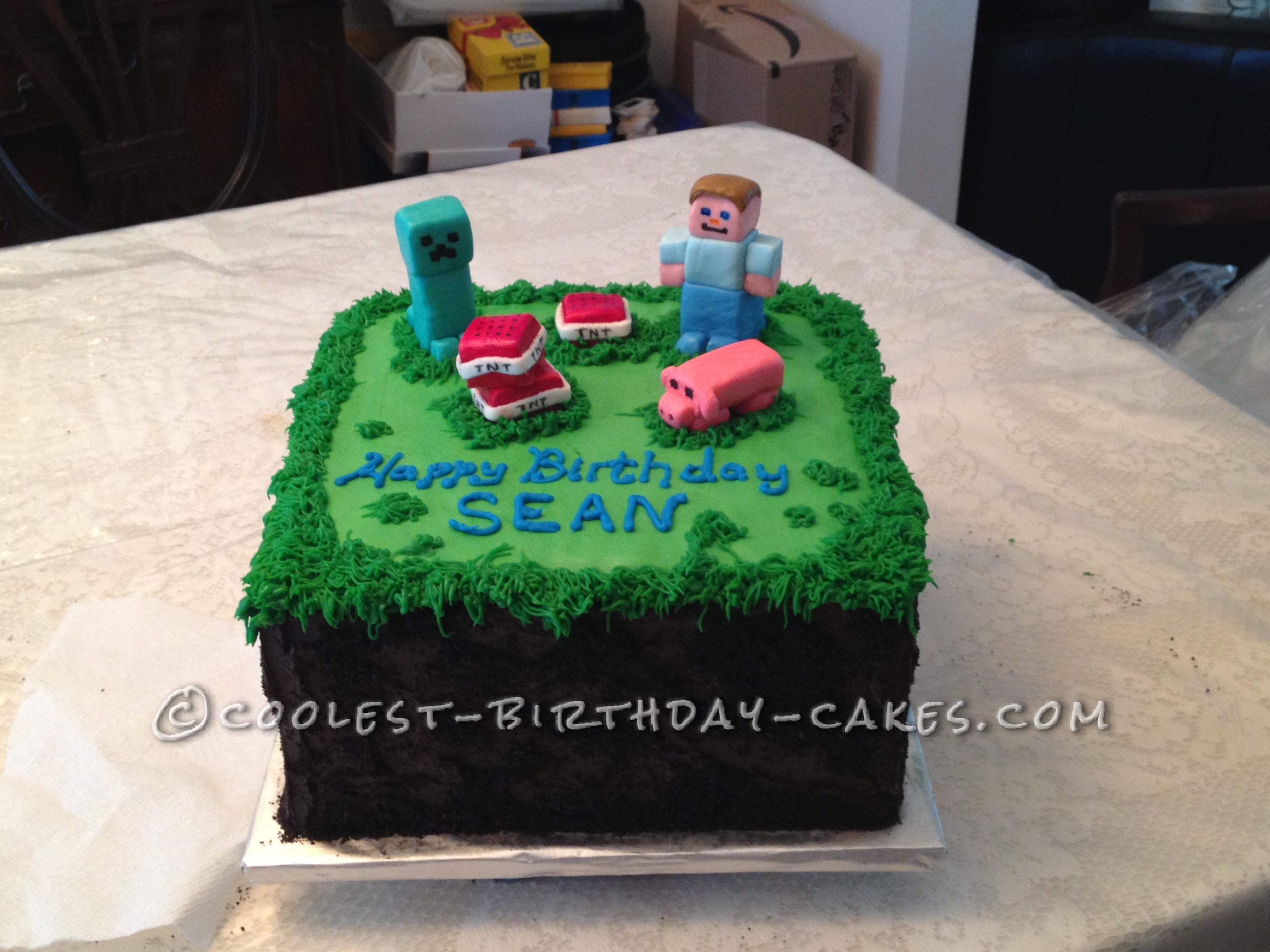 Coolest Minecraft Birthday Cake