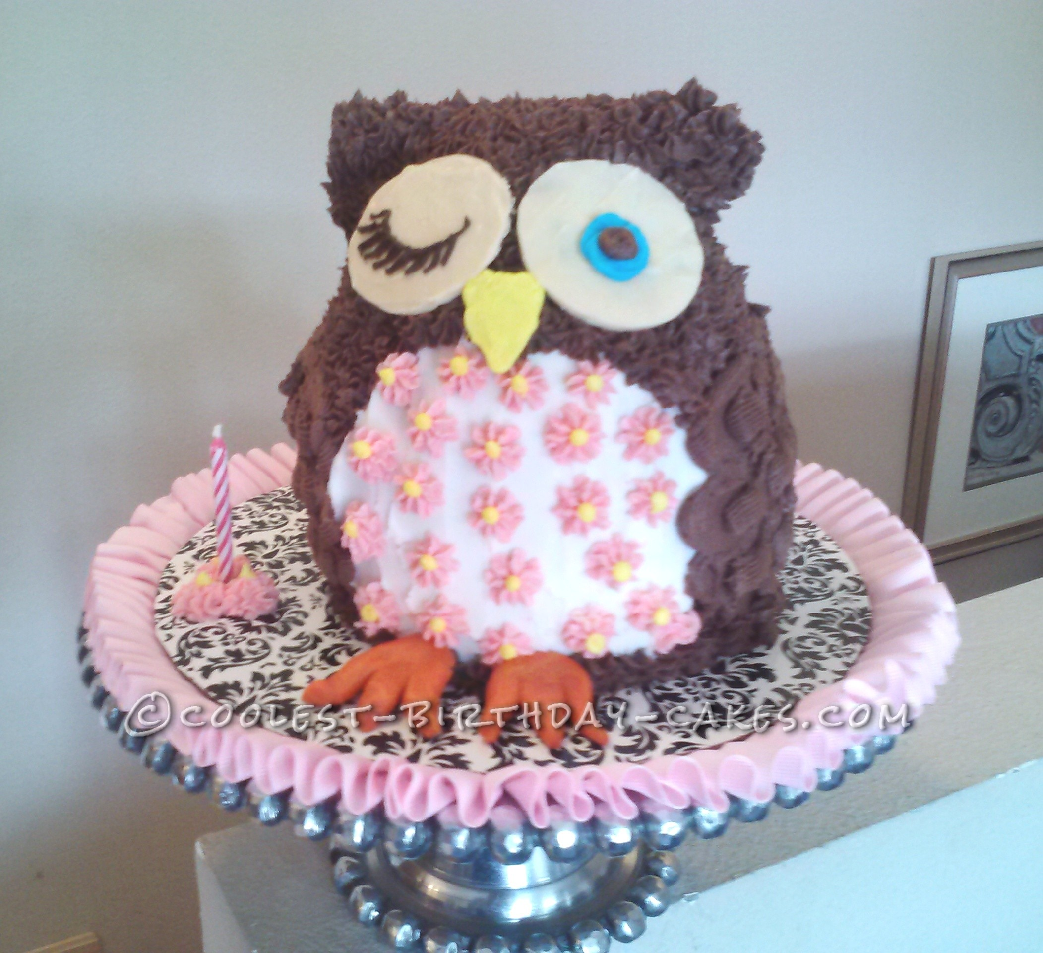 Cool Homemade Owl First Birthday Cake