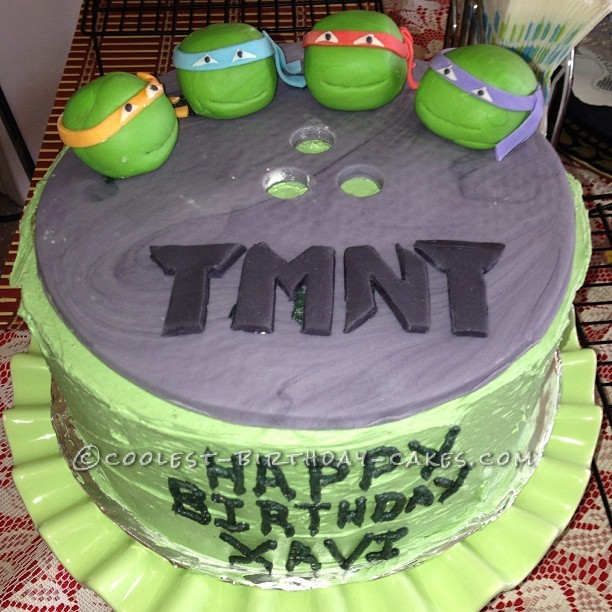 Marvelous Cool Homemade Teenage Mutant Ninja Turtles Birthday Cake Funny Birthday Cards Online Fluifree Goldxyz