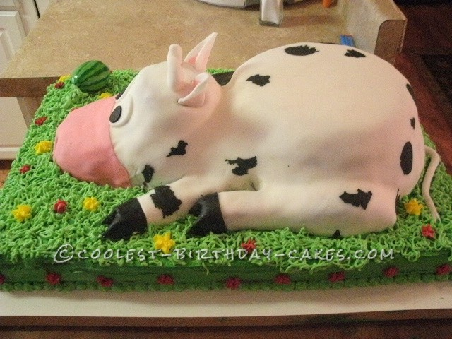 Coolest Cow Birthday Cake