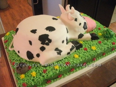 Wondrous Coolest Homemade Cow Birthday Cake For My 37 Year Old Son Funny Birthday Cards Online Overcheapnameinfo