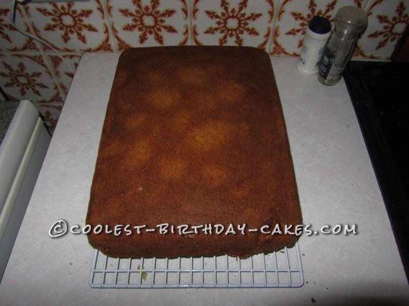 25x35 cm oven pan cake