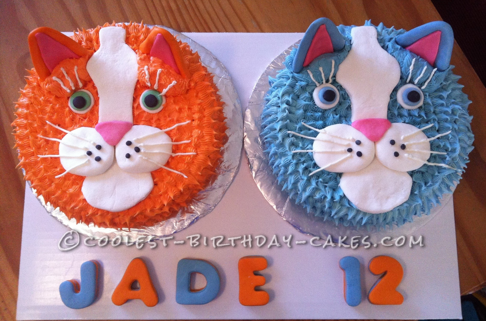 Coolest 12 Year Old Cat Lovers Cake