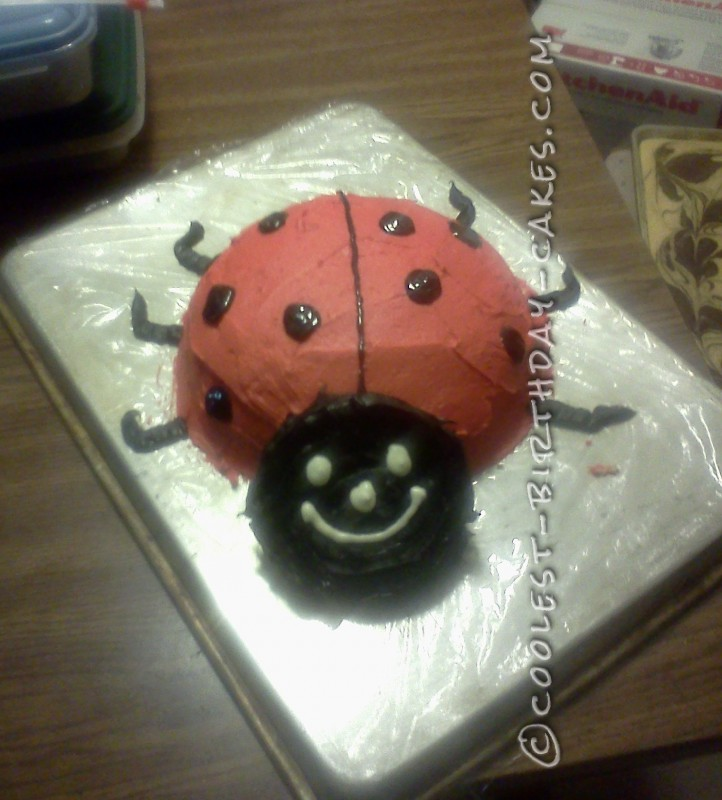 Coolest Lady Bug Cake