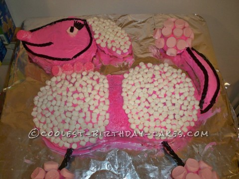 Pink Poodle Cake for My Grandaughter's 5th Birthday