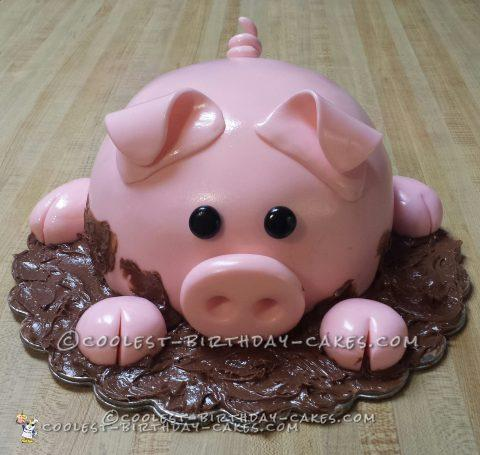 Sensational Coolest Diy Birthday Cake Ideas Especially For Pig Lovers Personalised Birthday Cards Bromeletsinfo