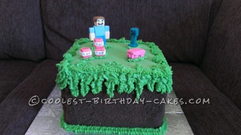 Excellent Minecraft Birthday Cake For 10 Year Old Boy Funny Birthday Cards Online Barepcheapnameinfo