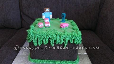 Minecraft Birthday Cake for 10 Year Old Boy