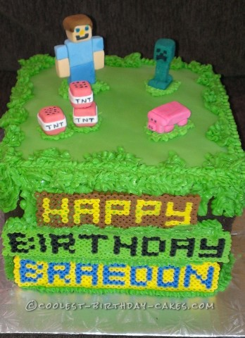 Superb Minecraft Birthday Cake For 10 Year Old Boy Funny Birthday Cards Online Elaedamsfinfo