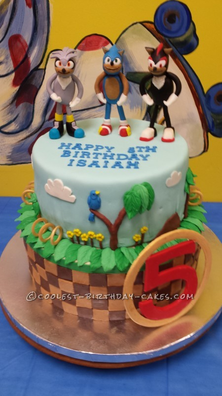Coolest Sonic Silver And Shadow The Hedgehogs Birthday Cake