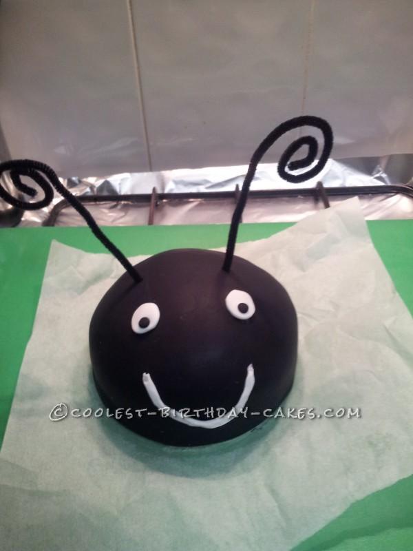 Coolest 1st Birthday Ladybird Cake